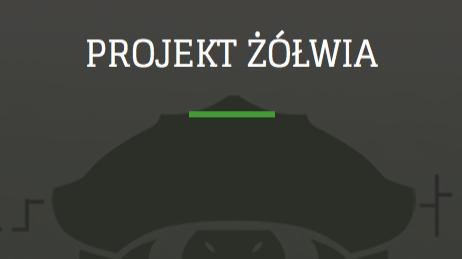 Projekt Żółwia